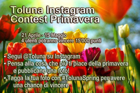 toluna-spring-IT