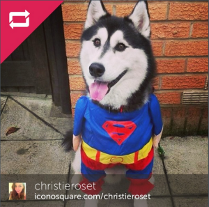 instagram winner Nov