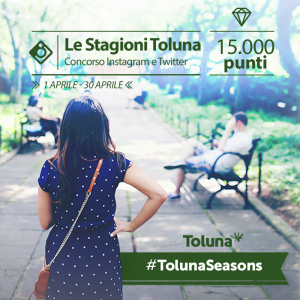 Instagram Toluna Seasons_IT