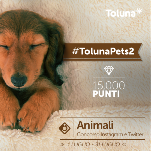 TolunaPets2_IT