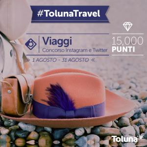 Toluna_Travel_IT