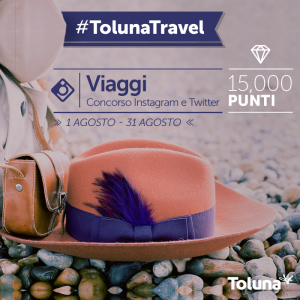 Toluna_Travel_IT